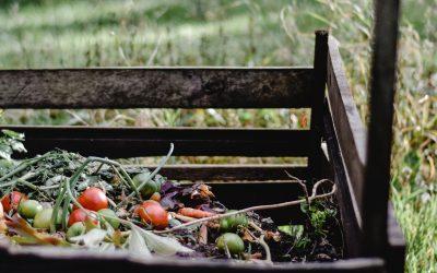 Cara Mudah Buat Pupuk Kompos Dari Sampah Dapur